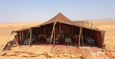 الخيمة في المنام وتفسير رؤيا الخيام وبيت الشعر في الحلم بالتفصيل
