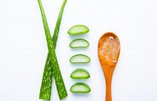 فوائد الألوفيرا للبشرة