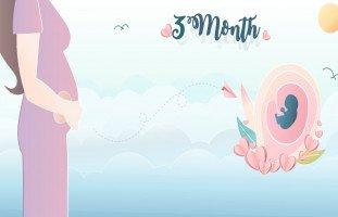 أسرار الحمل في الشهر الثالث