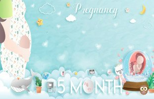 مخاطر الشهر الخامس من الحمل (مشاكل الحمل في الشهر الخامس والجماع)