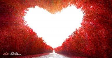 لا تضيعوا أوقاتكم بالندم على الماضي وعيشوا كل لحظاتكم بحب وشغف