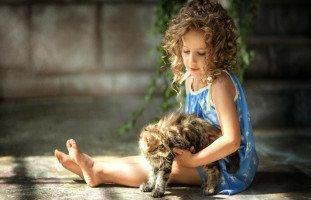 ابنتي تعاني بعد موت قطتها